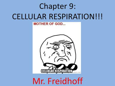 Chapter 9: CELLULAR RESPIRATION!!! Mr. Freidhoff.