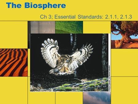 The Biosphere Ch 3; Essential Standards: 2.1.1, 2.1.3.