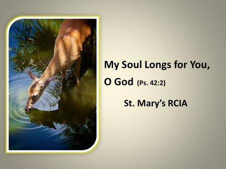 My Soul Longs for You, O God (Ps. 42:2) St. Mary's RCIA.
