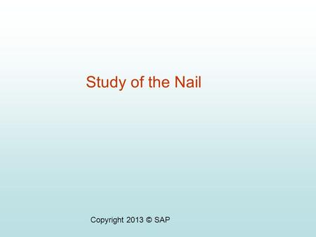 Study of the Nail Copyright 2013 © SAP.