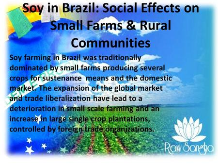 Soy in Brazil: Social Effects on Small Farms & Rural Communities Soy farming in Brazil was traditionally dominated by small farms producing several crops.