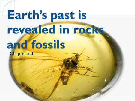 Earth's past is revealed in rocks and fossils Chapter 5.3.