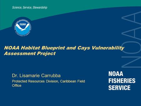 NOAA Habitat Blueprint and Cays Vulnerability Assessment Project Dr. Lisamarie Carrubba Protected Resources Division, Caribbean Field Office.