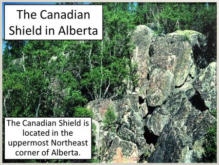 The Canadian Shield in Alberta The Canadian Shield is located in the uppermost Northeast corner of Alberta.