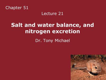 Chapter 51 Lecture 21 Salt and water balance, and nitrogen excretion Dr. Tony Michael.