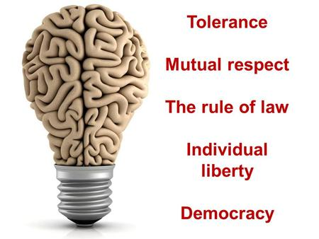 Tolerance Mutual respect The rule of law Individual liberty Democracy.