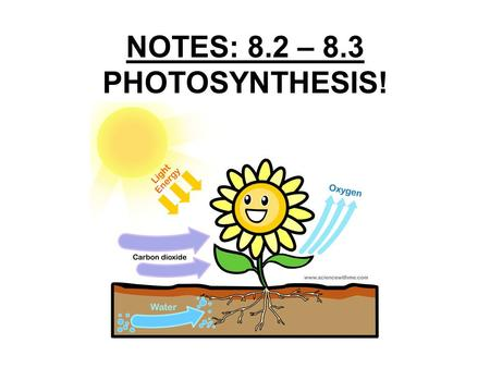 NOTES: 8.2 – 8.3 PHOTOSYNTHESIS!. 8.2 - Photosynthesis: Trapping the Sun's Energy Key Concepts: –What did the experiments of van Helmont, Priestley, and.
