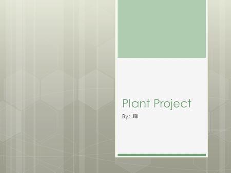 Plant Project By: Jill. How will an adjusted amount of Carbon Dioxide effect a plants growth? If my experiment works then people might be able to go live.