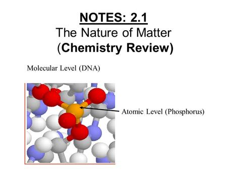 NOTES: 2.1 The Nature of Matter (Chemistry Review) Atomic Level (Phosphorus) Molecular Level (DNA)