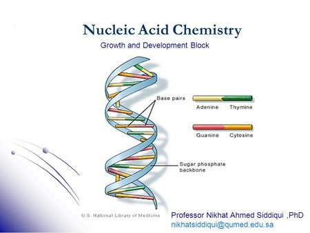 1 Nucleic Acid Chemistry Growth and Development Block Professor Nikhat Ahmed Siddiqui,PhD