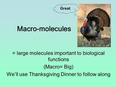 Macro-molecules = large molecules important to biological functions (Macro= Big) We'll use Thanksgiving Dinner to follow along Great.
