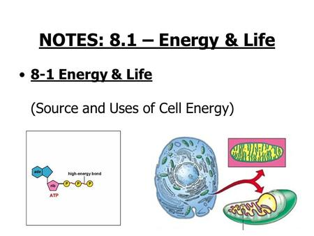 NOTES: 8.1 – Energy & Life 8-1 Energy & Life (Source and Uses of Cell Energy)