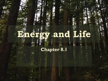 Energy and Life Chapter 8.1. Autotrophs vs. Heterotrophs Energy comes from food – BUT most of foods energy comes from the sun Plants/Animals use suns.