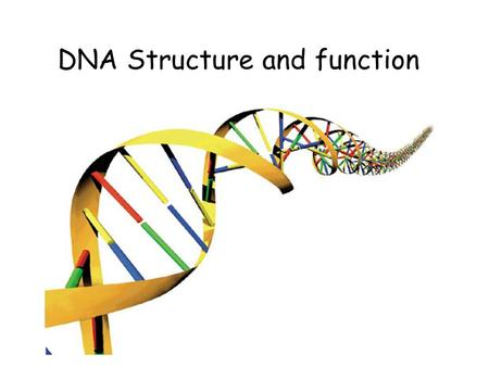 DNA Structure and function. Journey into the cell.