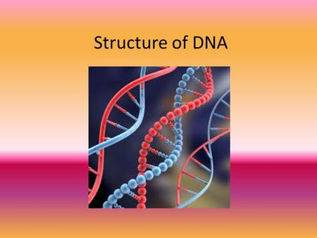 Structure of DNA. DNA The nucleic acid that stores and transmits genetic information of a cell from one generation to the next Nucleic = in the nucleus!