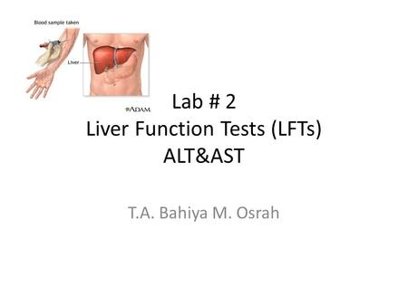 Lab # 2 Liver Function Tests (LFTs) ALT&AST T.A. Bahiya M. Osrah.