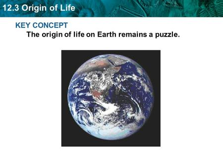 12.3 Origin of Life KEY CONCEPT The origin of life on Earth remains a puzzle.