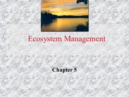 Ecosystem Management Chapter 5. Shifting management n Fisheries management is shifting from commodity production of single resource to management of whole.