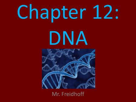 Chapter 12: DNA Mr. Freidhoff 1900's What is known to man? – Chromosomes carry genetic information. – Some type of heredity is passed on to offspring.