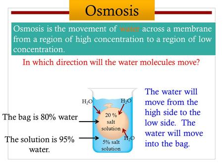 Osmosis is the movement of water across a membrane from a region of high concentration to a region of low concentration. 20 % salt solution 5% salt solution.