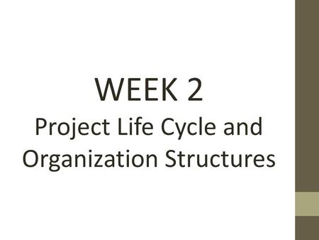 WEEK 2 Project Life Cycle and Organization Structures.