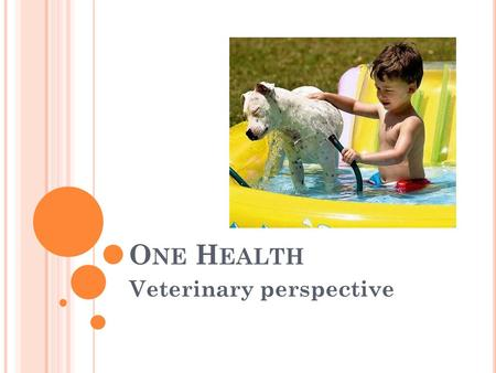 O NE H EALTH Veterinary perspective. O NE H EALTH The collaborative effort of multiple disciplines to attain optimal health for people, animals and our.