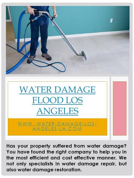 WWW. WATER-DAMAGE-LOS- ANGELES-LA.COM WATER DAMAGE FLOOD LOS ANGELES Has your property suffered from water damage? You have found the right company to.