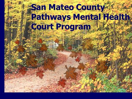 History and Background Formed in 2006 as a joint collaboration of San Mateo County Courts, Probation Department, District Attorney Office, Sheriff's Office,