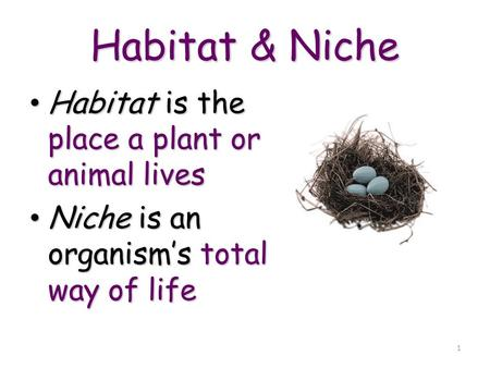 1 Habitat & Niche Habitat is the place a plant or animal lives Habitat is the place a plant or animal lives Niche is an organism's total way of life Niche.