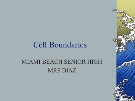 Cell Boundaries MIAMI BEACH SENIOR HIGH MRS DIAZ.