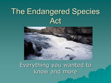 The Endangered Species Act Everything you wanted to know and more.