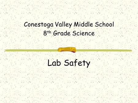 Lab Safety Conestoga Valley Middle School 8 th Grade Science.