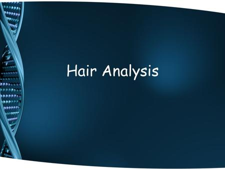 Hair Analysis. Information from hair evidence Hair is considered class evidence…can't be used to identify a specific individual, but can be used to identify.