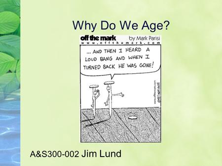 Why Do We Age? A&S300-002 Jim Lund. Why do animals age? What causes aging? How does a young animal become an old animal? Where in the cell does aging.