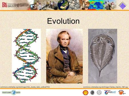 Evolution commons.wikimedia.org/wiki/Image:Charles_Darwin_1881.jpgcommons.wikimedia.org/wiki/Image:DNA_double_helix_vertikal.PNG.