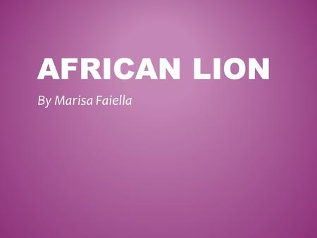 AFRICAN LION By Marisa Faiella. CHARACTERISTICS OF AN AFRICAN LION! Vertebrate or Invertebrate? The African Lion is a vertebrate because they have a back.