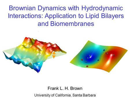 Frank L. H. Brown University of California, Santa Barbara Brownian Dynamics with Hydrodynamic Interactions: Application to Lipid Bilayers and Biomembranes.
