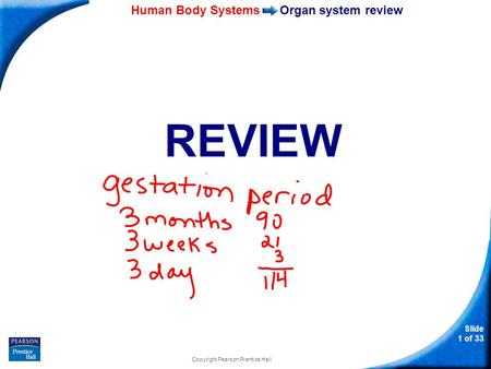 35–1 Human Body Systems Slide 1 of 33 Copyright Pearson Prentice Hall Organ system review REVIEW.
