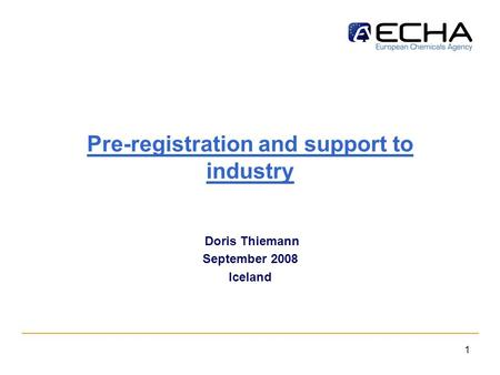 1 Pre-registration and support to industry Doris Thiemann September 2008 Iceland.