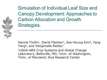 Simulation of Individual Leaf Size and Canopy Development: Approaches to Carbon Allocation and Growth Strategies. Dennis Timlin 1, David Fleisher 1, Soo-Hyung.