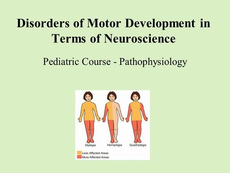 Disorders of Motor Development in Terms of Neuroscience Pediatric Course - Pathophysiology.