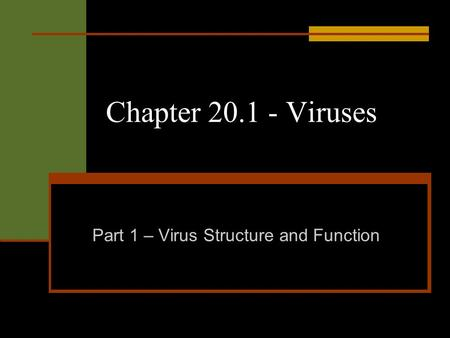 Chapter 20.1 - Viruses Part 1 – Virus Structure and Function.