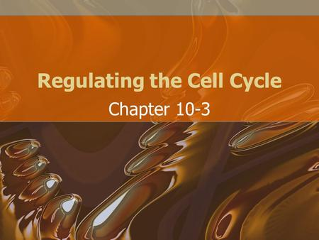 Regulating the Cell Cycle Chapter 10-3. Controls on Cell Division When there is an injury such as a cut in the skin or break in a bone, the cells at the.