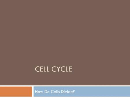 CELL CYCLE How Do Cells Divide?. What you will learn…  1. Why Do Cells Divide?  2. Chromosome structure  3. Cell Division in Prokaryotes  4. Cell.