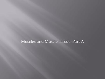 Muscles and Muscle Tissue: Part A. 1. Skeletal muscle tissue:  Attached to bones and skin  Striated  Voluntary (i.e., conscious control)  Powerful.