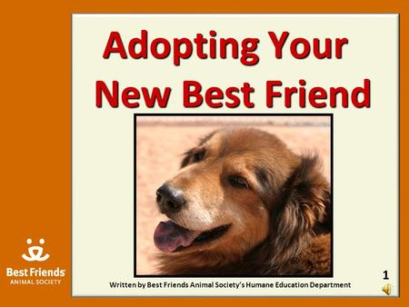 Adopting Your New Best Friend Written by Best Friends Animal Society's Humane Education Department 1.