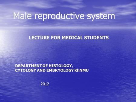 Male reproductive system LECTURE FOR MEDICAL STUDENTS DEPARTMENT OF HISTOLOGY, CYTOLOGY AND EMBRYOLOGY KhNMU 2012.