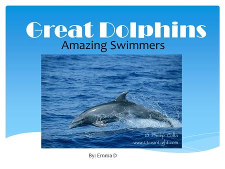 Great Dolphins Amazing Swimmers By: Emma D.  The scientific name for a Bottle Nose dolphin is Tursiops Truncatus.  A dolphin can live up to 45 years.