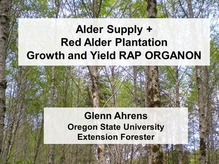 Alder Supply + Red Alder Plantation Growth and Yield RAP ORGANON Glenn Ahrens Oregon State University Extension Forester.
