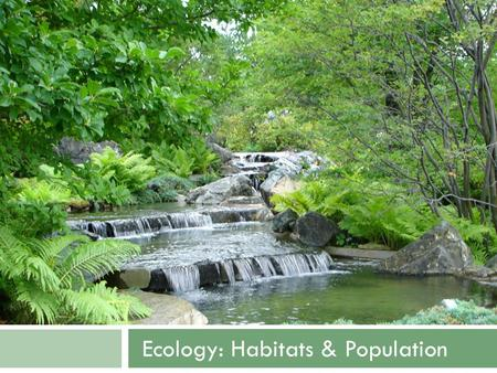Ecology: Habitats & Population. Ecology: Habitats & Populations.